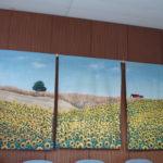 Sonnenblumen - Bilder von Sr. Katharina Franz (c) Franz